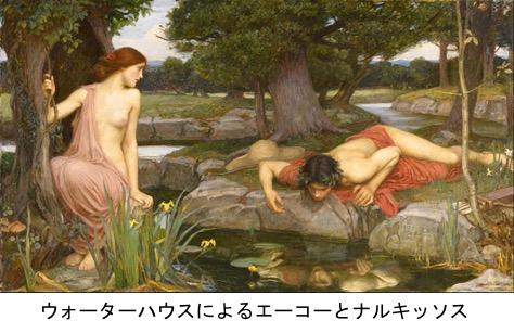 f:id:yachikusakusaki:20200114011323p:plain