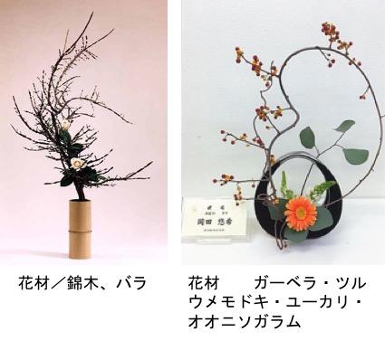 f:id:yachikusakusaki:20200116225340j:plain