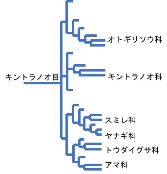 f:id:yachikusakusaki:20200201173513j:plain