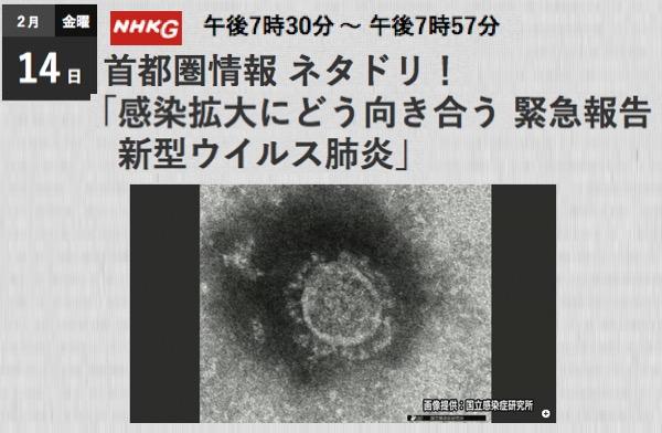 f:id:yachikusakusaki:20200215173955j:plain