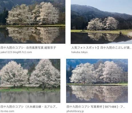 f:id:yachikusakusaki:20200315220128j:plain