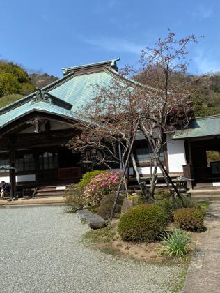 f:id:yachikusakusaki:20200323223334j:plain