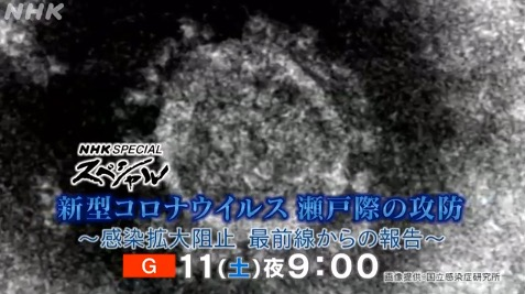 f:id:yachikusakusaki:20200412232428j:plain