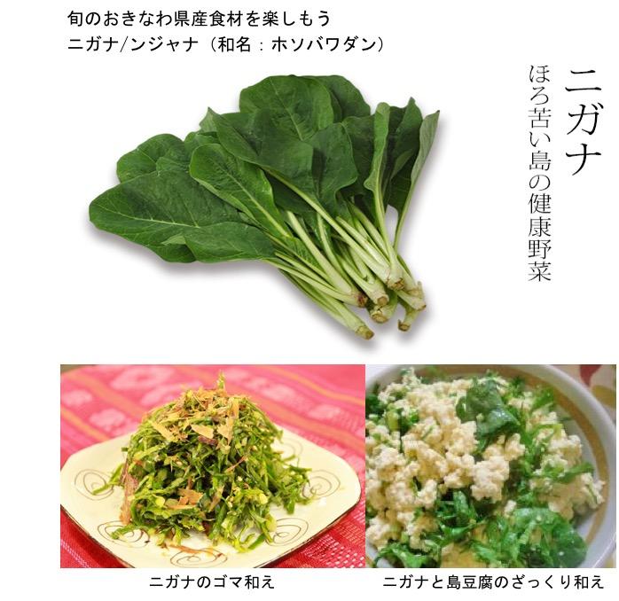 f:id:yachikusakusaki:20200512233051j:plain