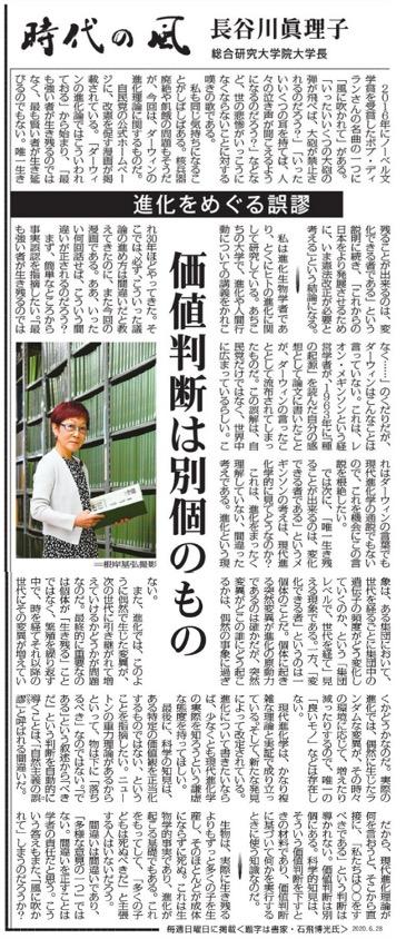 f:id:yachikusakusaki:20200701001650j:plain
