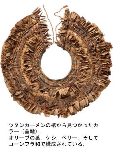 f:id:yachikusakusaki:20200722223620j:plain
