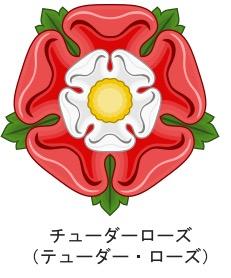 f:id:yachikusakusaki:20200805000745j:plain