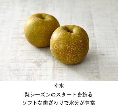 f:id:yachikusakusaki:20200831005150j:plain