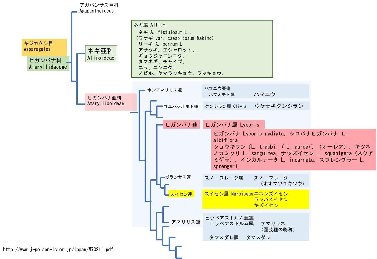 f:id:yachikusakusaki:20200921224829j:plain