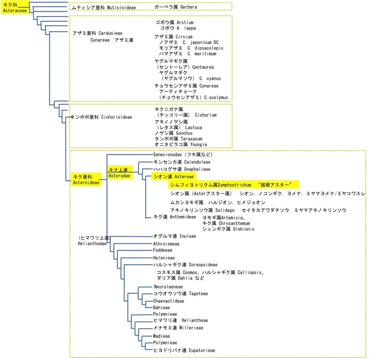 f:id:yachikusakusaki:20201027011615j:plain