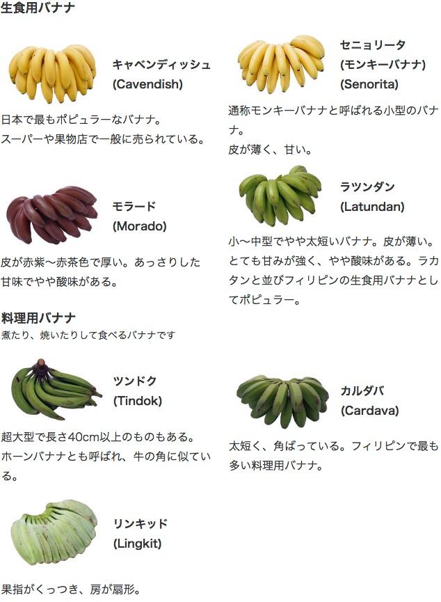 f:id:yachikusakusaki:20201123002319j:plain