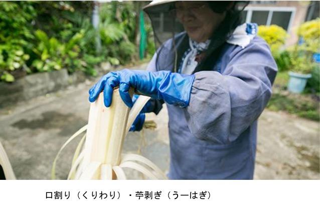 f:id:yachikusakusaki:20201123233617j:plain
