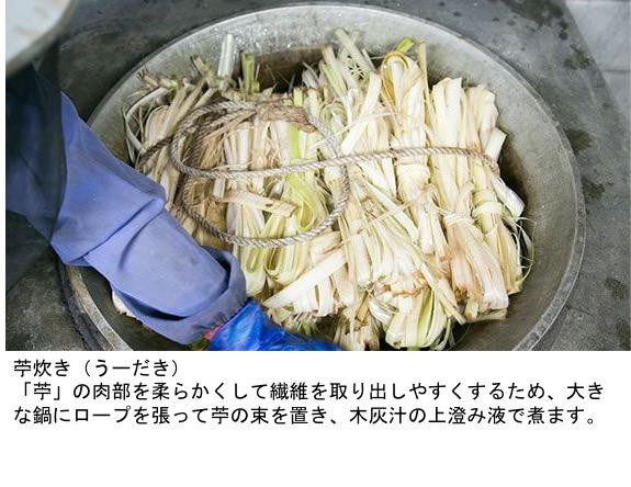 f:id:yachikusakusaki:20201123233716j:plain