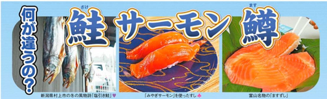 f:id:yachikusakusaki:20201230005725j:plain
