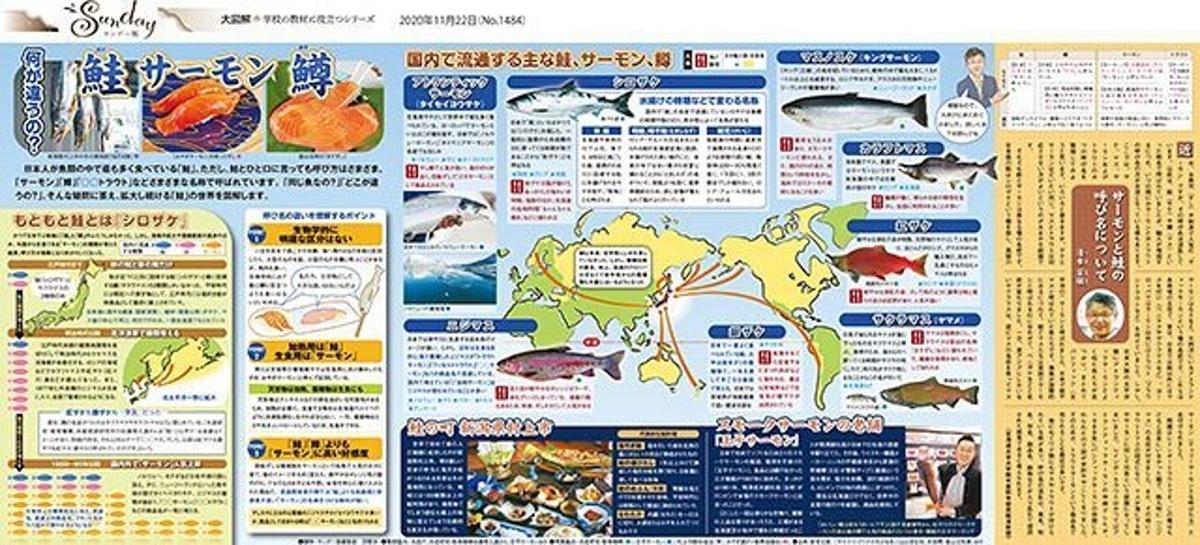 f:id:yachikusakusaki:20201230010003j:plain