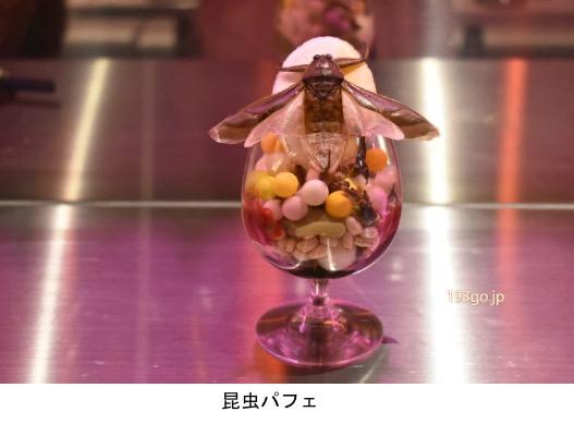f:id:yachikusakusaki:20210109001619j:plain