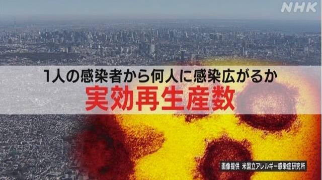 f:id:yachikusakusaki:20210115220646j:plain