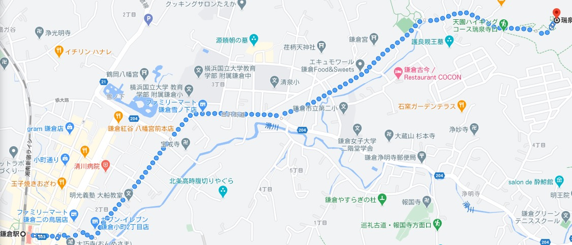 f:id:yachikusakusaki:20210212231932j:plain