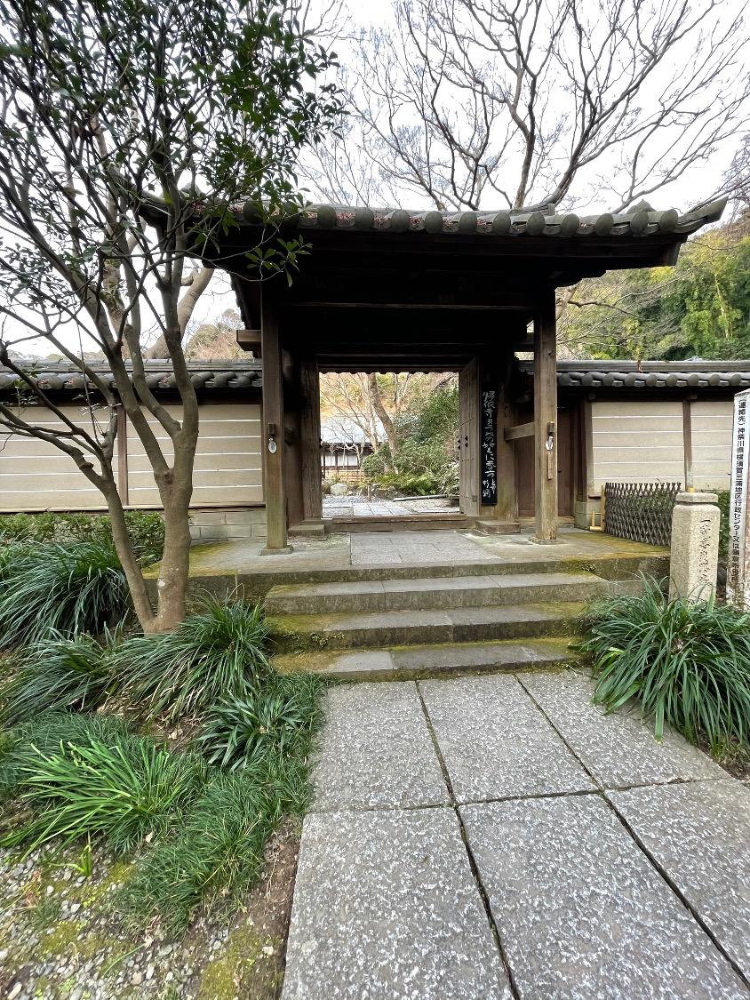 f:id:yachikusakusaki:20210212232723j:plain