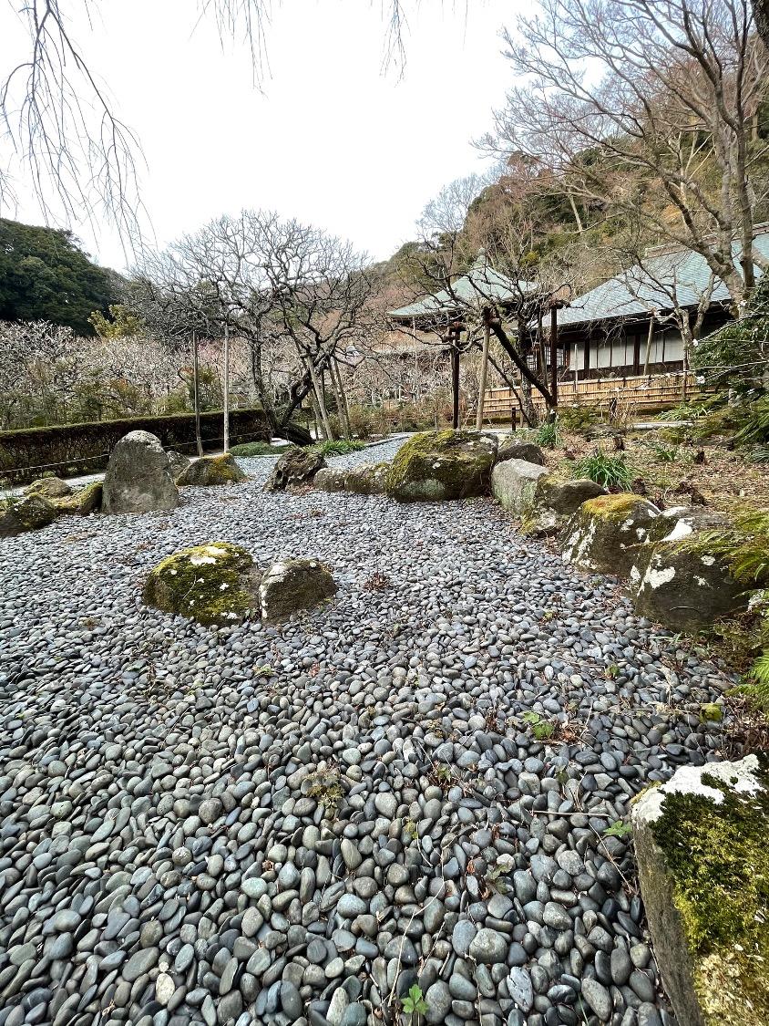 f:id:yachikusakusaki:20210212232839j:plain