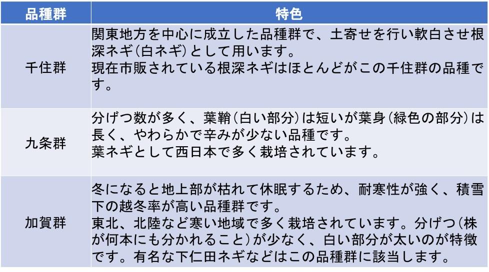 f:id:yachikusakusaki:20210222222757j:plain