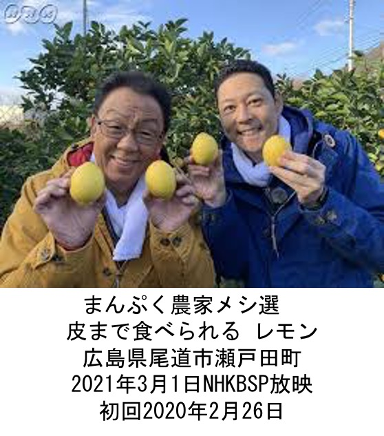f:id:yachikusakusaki:20210314230335j:plain