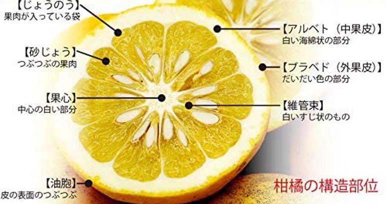 f:id:yachikusakusaki:20210315004224j:plain