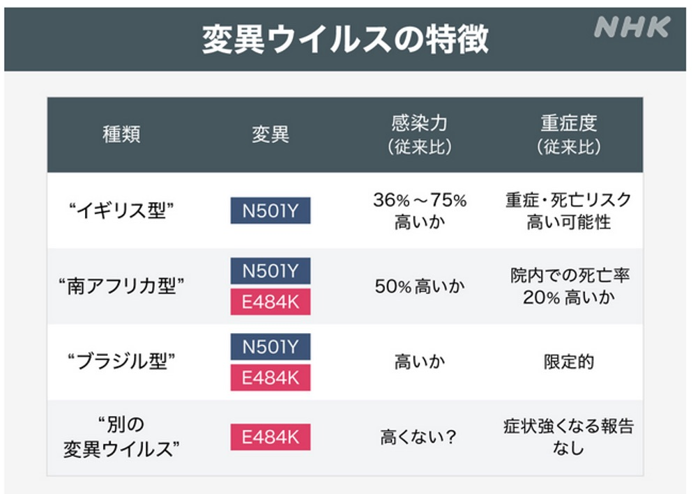 f:id:yachikusakusaki:20210406234439j:plain