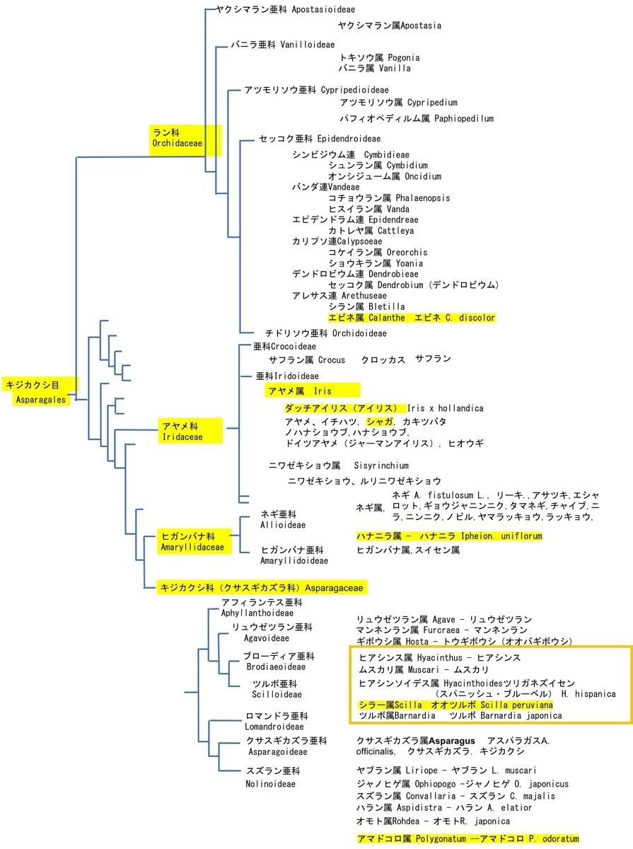 f:id:yachikusakusaki:20210417165157j:plain