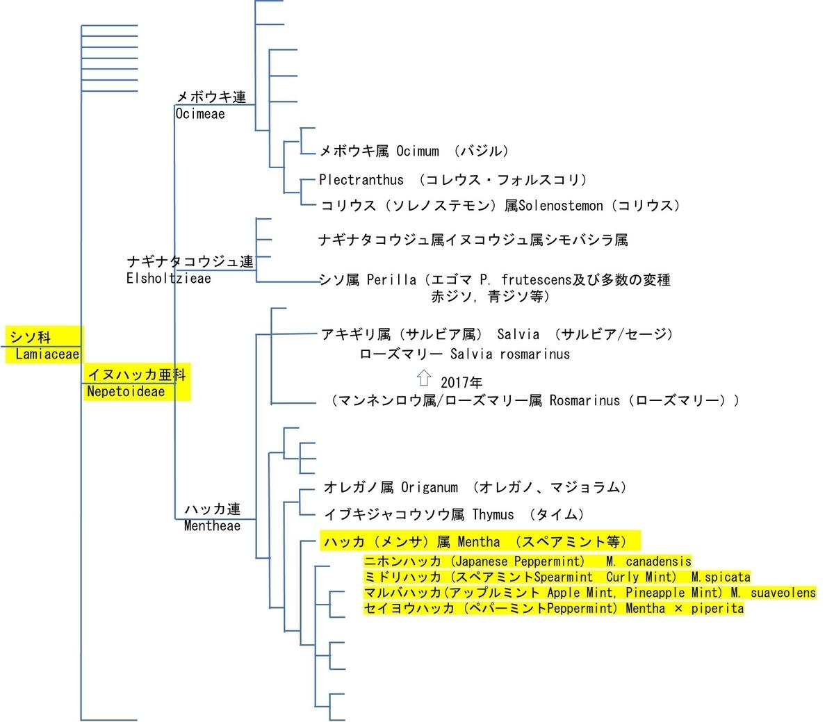 f:id:yachikusakusaki:20210522011523j:plain