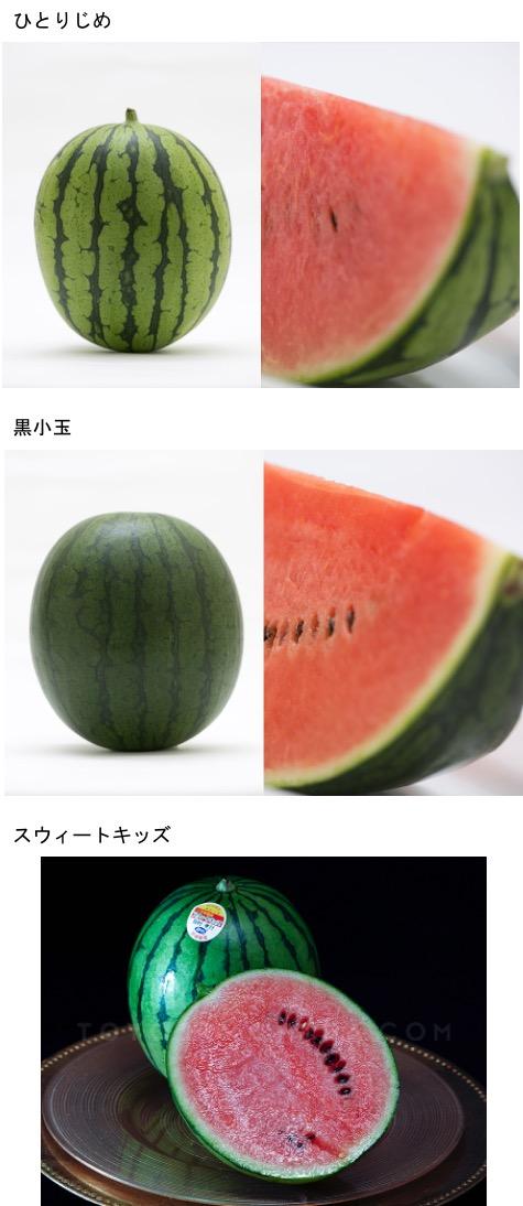f:id:yachikusakusaki:20210727001055j:plain