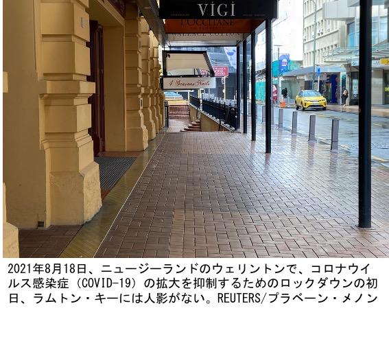 f:id:yachikusakusaki:20210822002512j:plain