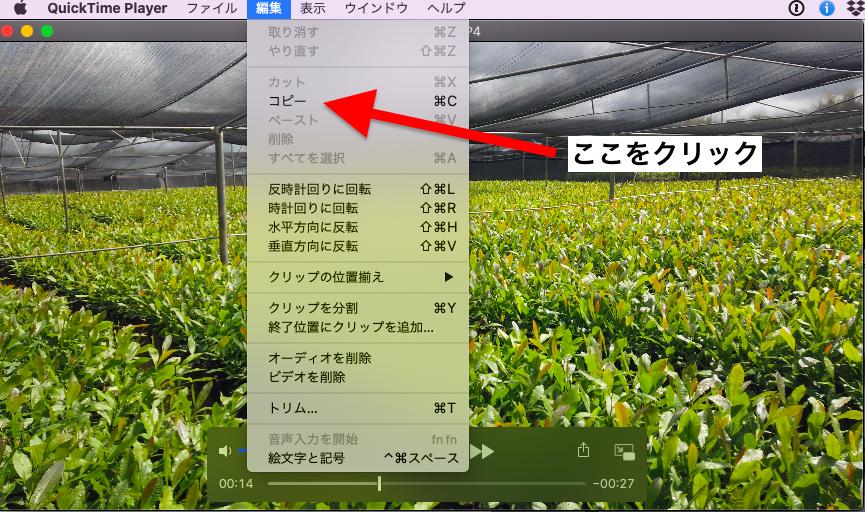 f:id:yachiro:20200130183907p:plain