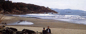 平野海水浴場