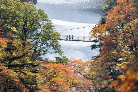 紅葉の回顧の吊橋(那須塩原)