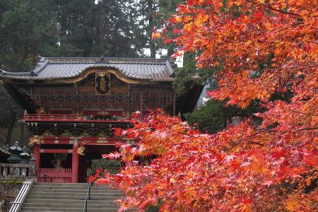 紅葉の日光山輪王寺