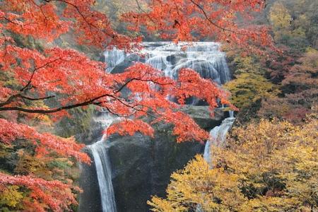紅葉の袋田の滝