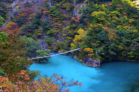 紅葉の寸又峡 夢の吊橋