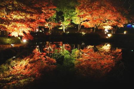 紅葉の曽木公園