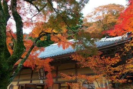 紅葉の永願寺