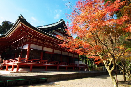 紅葉の比叡山延暦寺