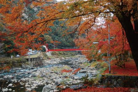 紅葉の武庫川渓谷