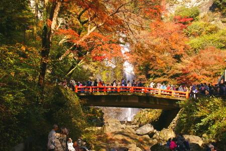 紅葉の箕面大滝
