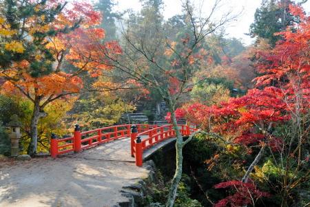 宮島の紅葉谷公園
