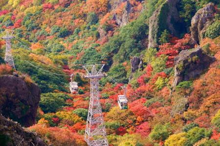 紅葉の寒霞渓