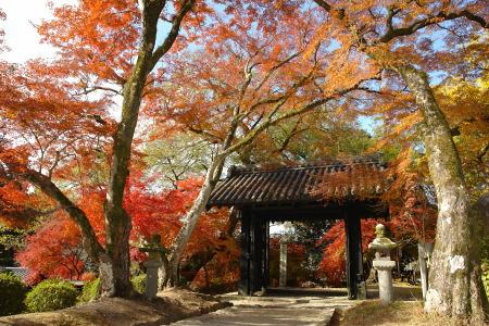 紅葉の秋月城跡