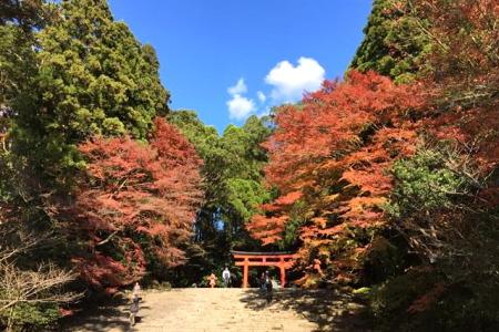 紅葉の霧島神宮