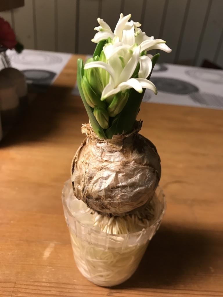 f:id:yadorigi-cafeanddining:20180202013413j:plain
