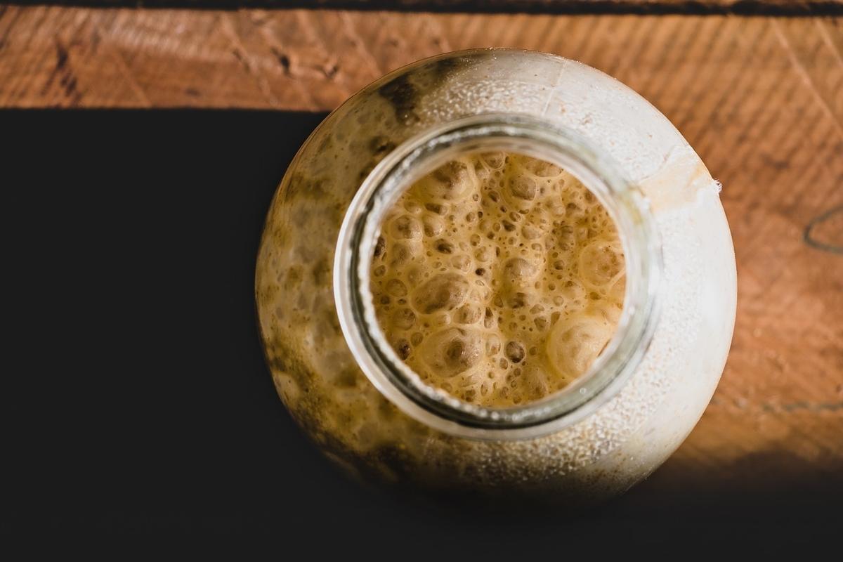 酵母 培養 ウイスキー