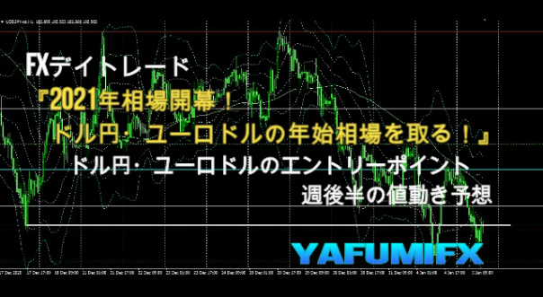 f:id:yafumifx:20210106010504j:plain